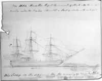 Thomas Nickerson's Drawing of the Whale Charging the Essex