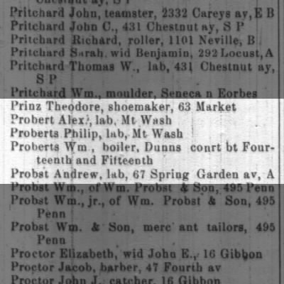 Alex. & Philip Probert, laborers, Mt. Wash., Pittsburg City Dir. 1872