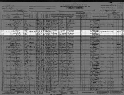 Davis family 1930 census ?