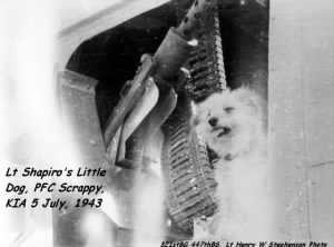 "Lt Shapiro's Little Dog ""PFC Scrappy"" KIA / 5 July'43"