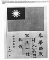 Chinese Flag patch...