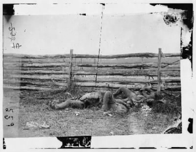 51 - Antietam, Maryland. Dead of Stonewall Jackson's Brigade by rail fence on the Hagerstown pike › Page 1 - Fold3.com