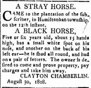 Clayton Chamberlin 1808 Stray Horse Notice2.JPG
