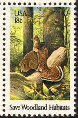 Ruffed grouse.gif